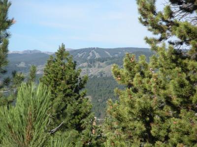 View of Eldora.JPG