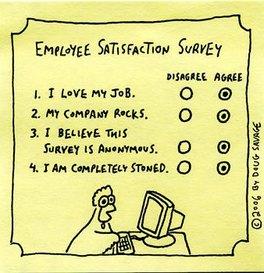 Survey11.jpg