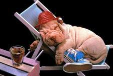 relax take it easy1.JPG