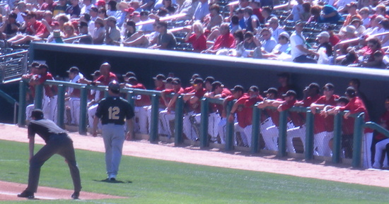 D-Backs Team 3-1-09.jpg