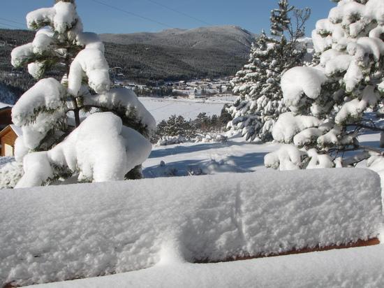 Snow 3-19-10.JPG