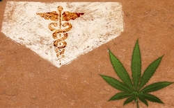 baseball marijuana.jpg
