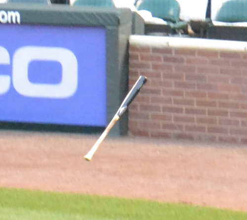 Floating bat 4-29-11.jpg