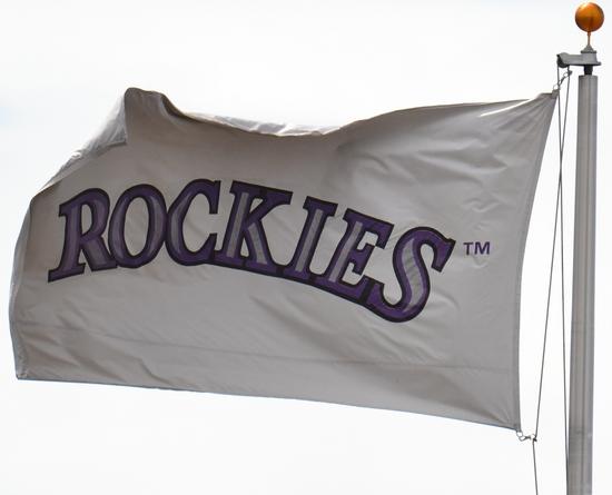 Rockis Flag 4-17-11.jpg